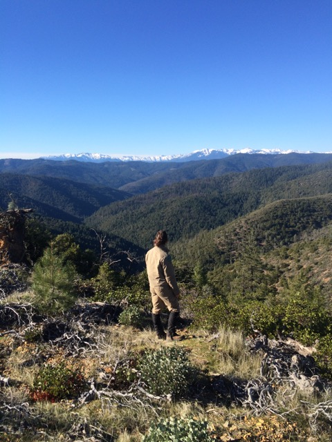 Looking west from the Chappie-Shasta OHV area toward the Trinity Alps
