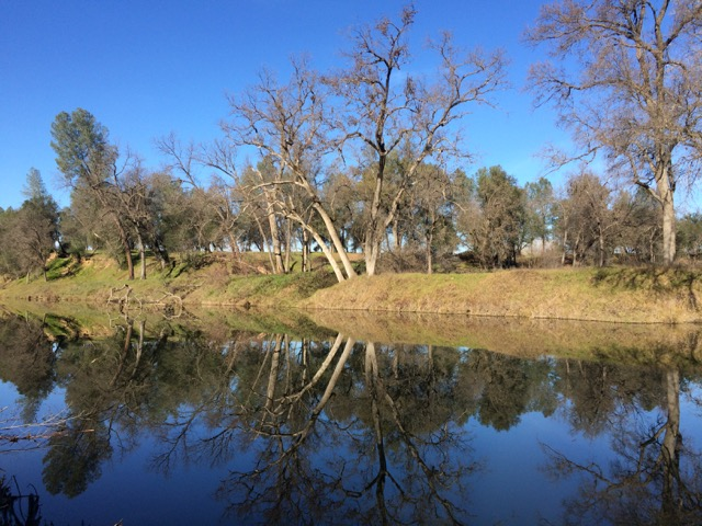 Coyote Pond in the Sacramento Bend River Outstanding Natural Area
